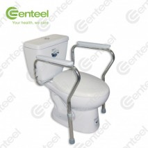 Toilet Support Frame