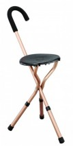 Adjustable Cane Chair