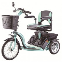Tricycle Type Electric Scooter