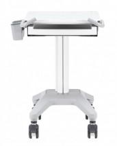 Laptop/Devices cart