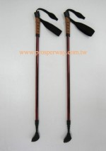 Nordic Cane/Walking stick with adjustable height